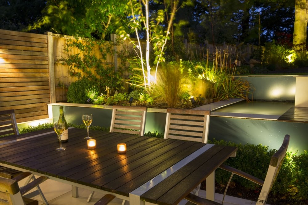 Garden with Lights and Flowers