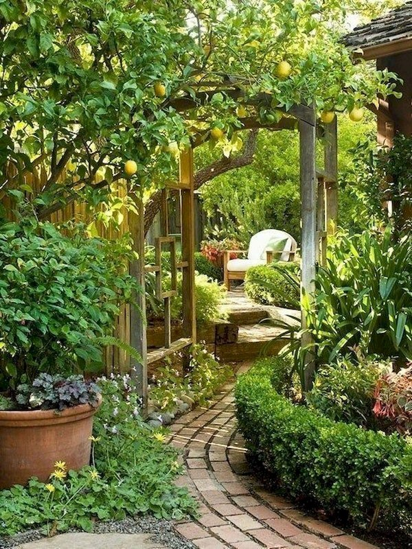 Useful Green Garden Decoration