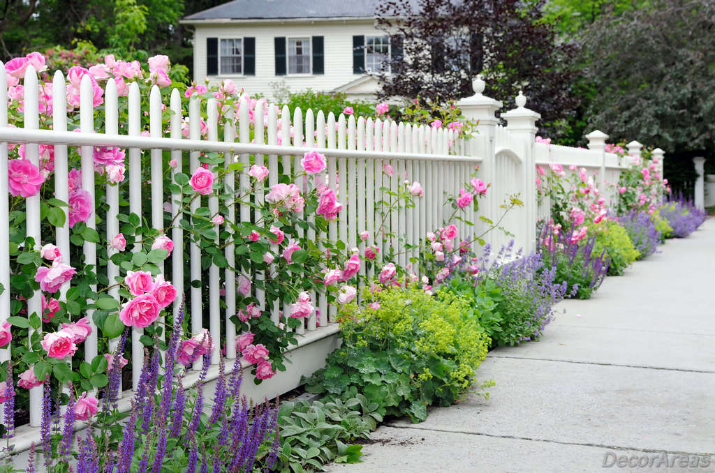Beautiful Garden Fences