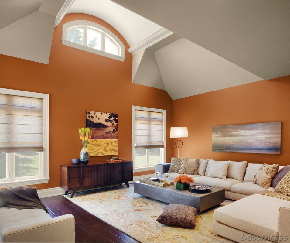 Best Color Combination For Living Room