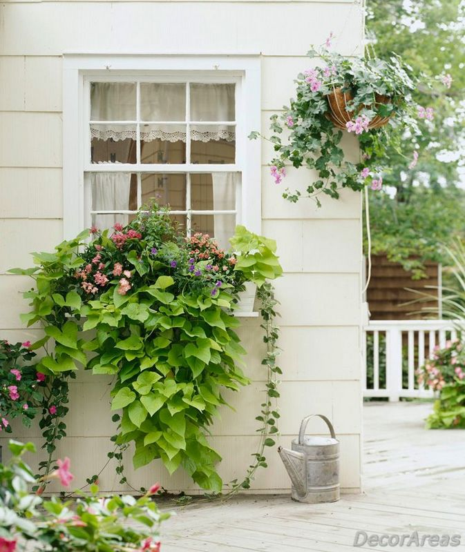 Best Ideas for Garden Floral Ornaments