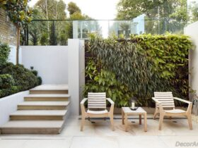 Outdoor Plant Wall ideas