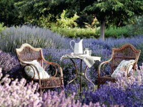 Best Wonderful Rustic Garden Decoration Ideas
